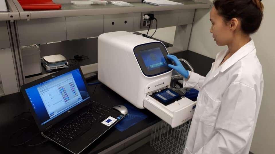 Лабораторная диагностика проб анализов на коронавирус