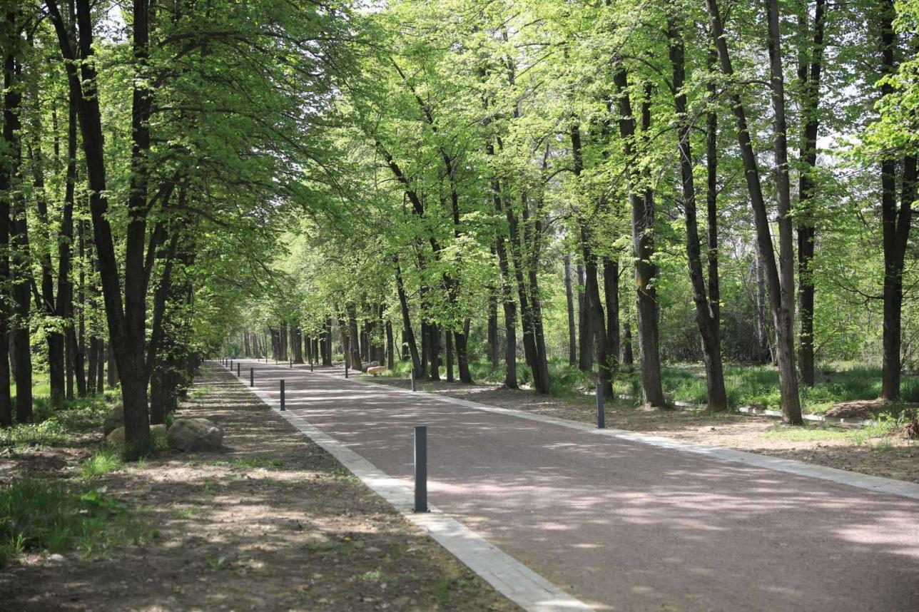 Экологическая дорожка