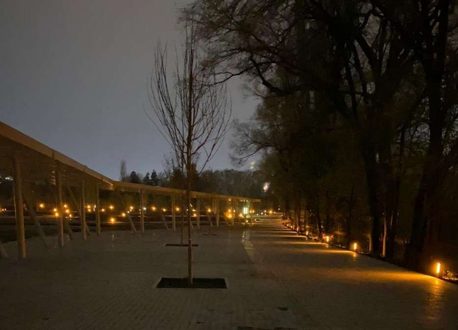 Ночное освещение в Ботсаде