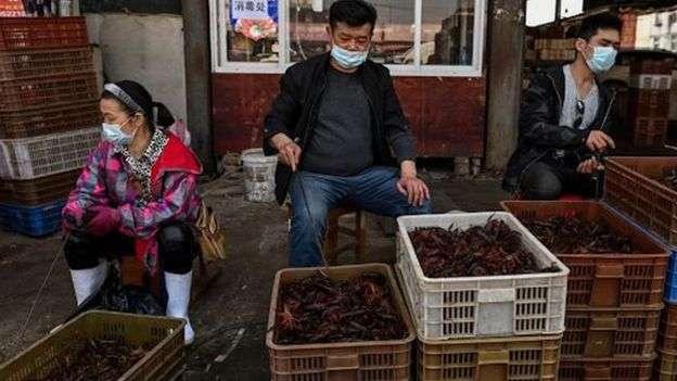 Рынок диких животных