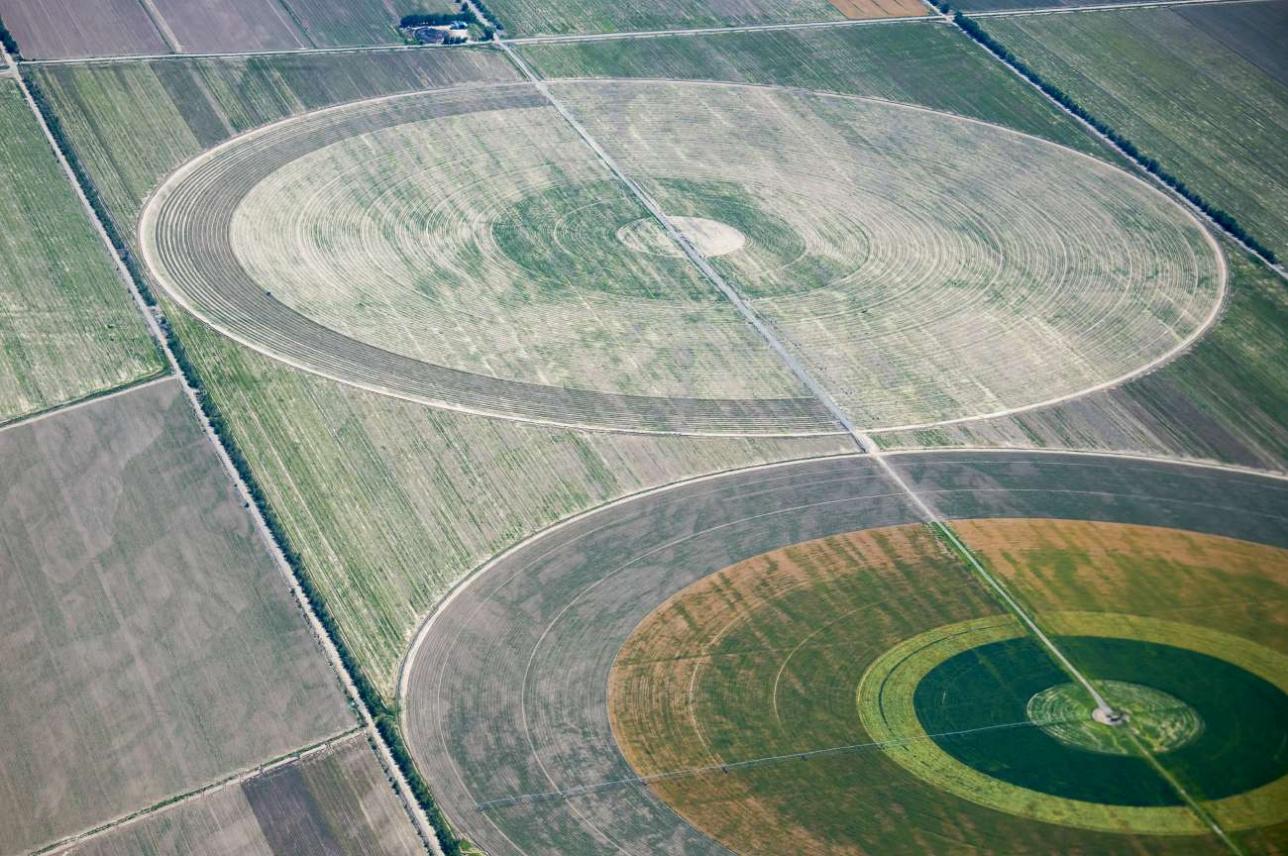 Круговые дождевальные установки на соевых полях