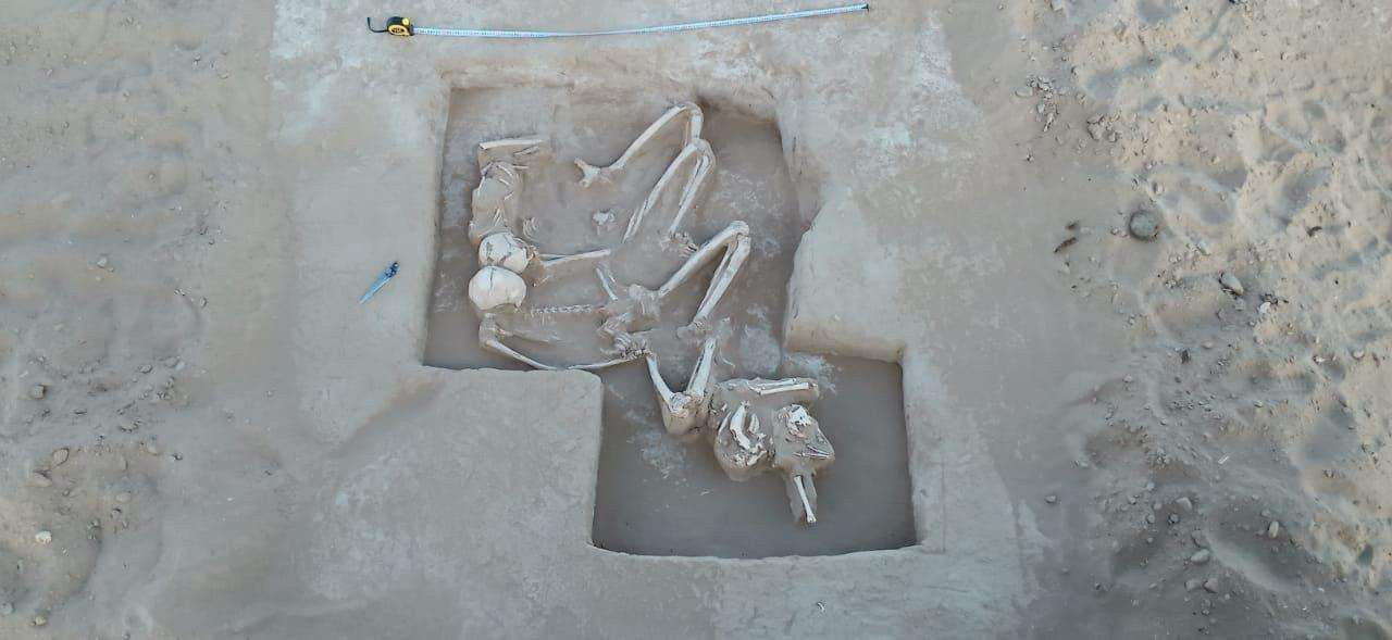 Археологи обнаружили останки ребёнка