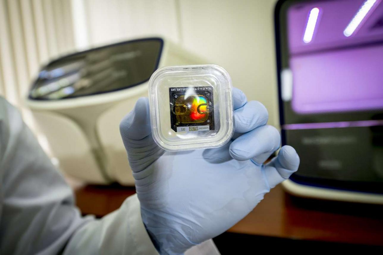 Специальный картридж с образцами вируса