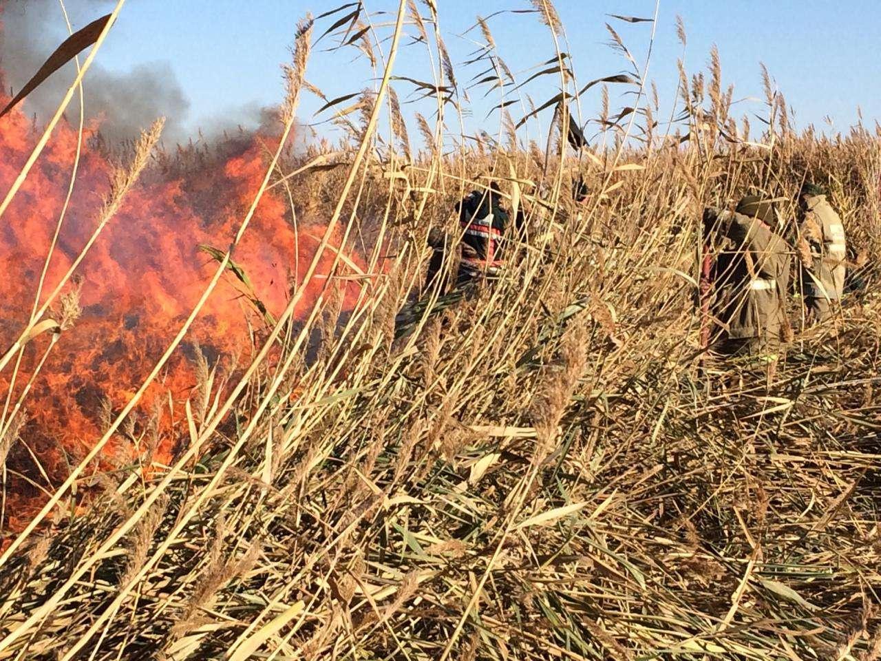 Пять дней тушили пожар на побережье Каспия