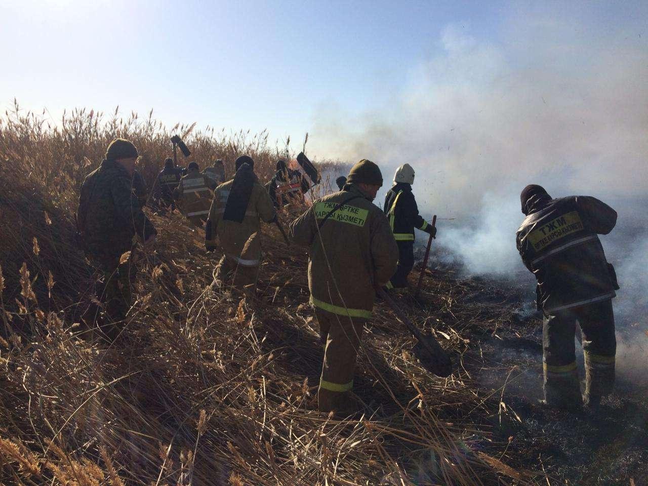 Пожар тушили в болотистой местности