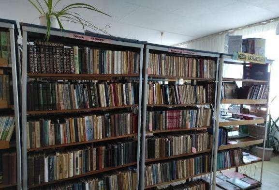 Школьная библиотека одной из сельских школ в Акмолинской области