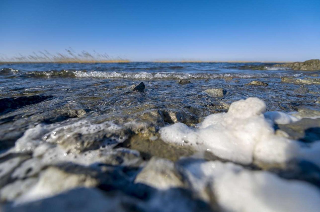 Сети из моноволокна наносят огромный вред окружающей среде