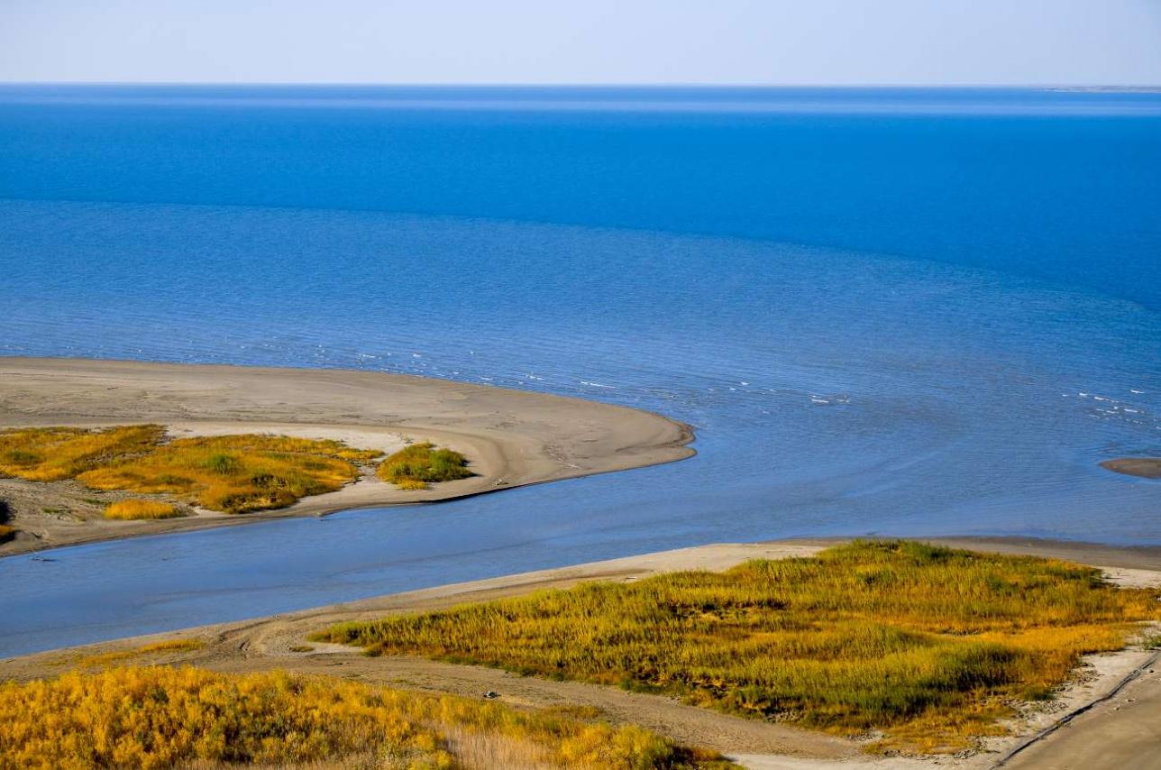 """Место впадения реки Лепсы в озеро """"Балхаш"""""""