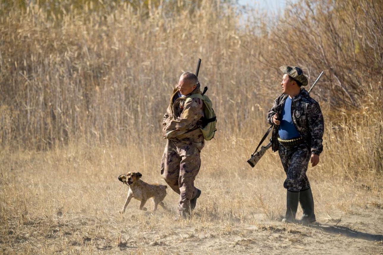 В октябре в Прибалхашье открывается охотничий сезон