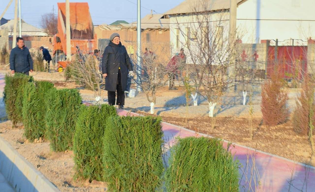 Фото предоставлено УВП Туркестанской области