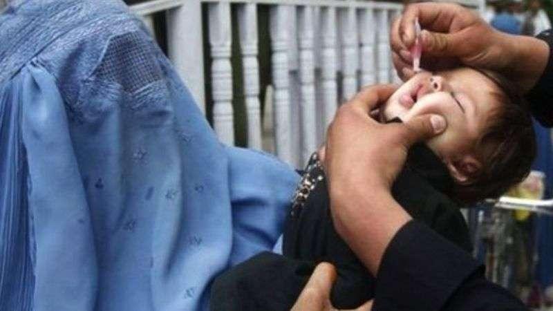 Эндемическая передача вируса продолжается в Афганистане, Нигерии и Пакистане