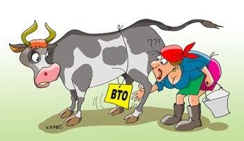 По условиям ВТО, странам-новичкам нельзя оказывать своим аграриям помощь напрямую