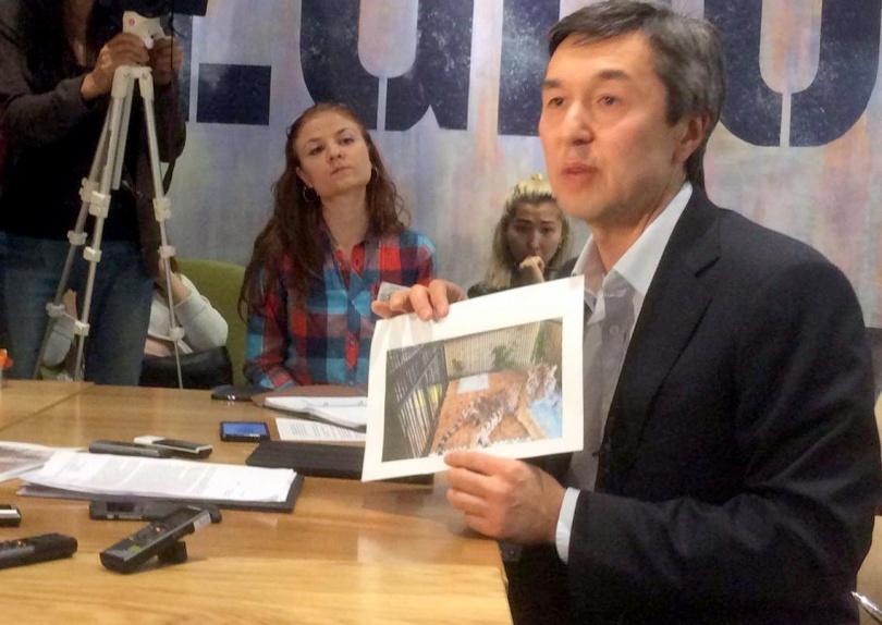 Раимбек Баталов демонстрирует фото умирающей тигрицы