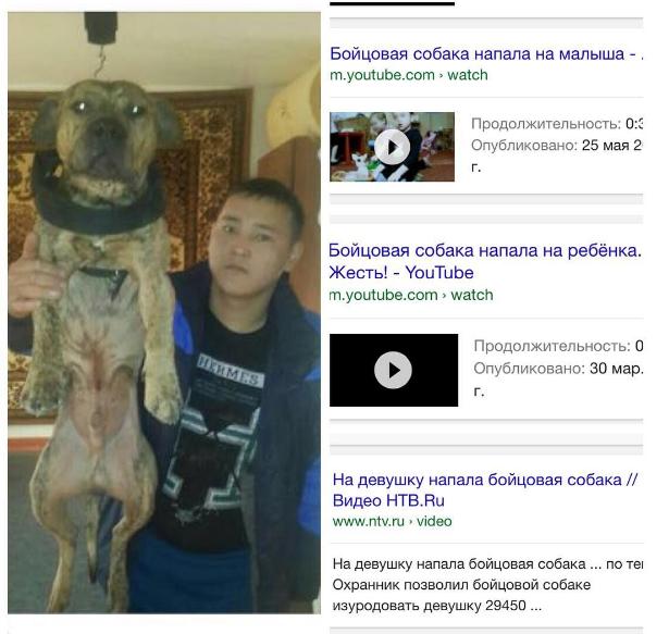 на фото Узакбай Бактыбай с собакой