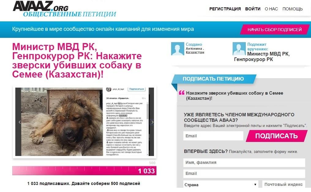 Жители Семея подписывают петицию с требованием наказать живодёров