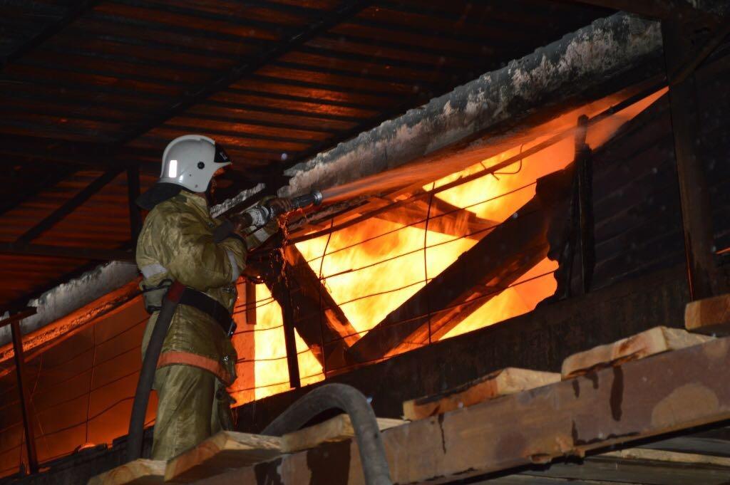 Площадь возгорания составила около трёх тысяч квадратных метров