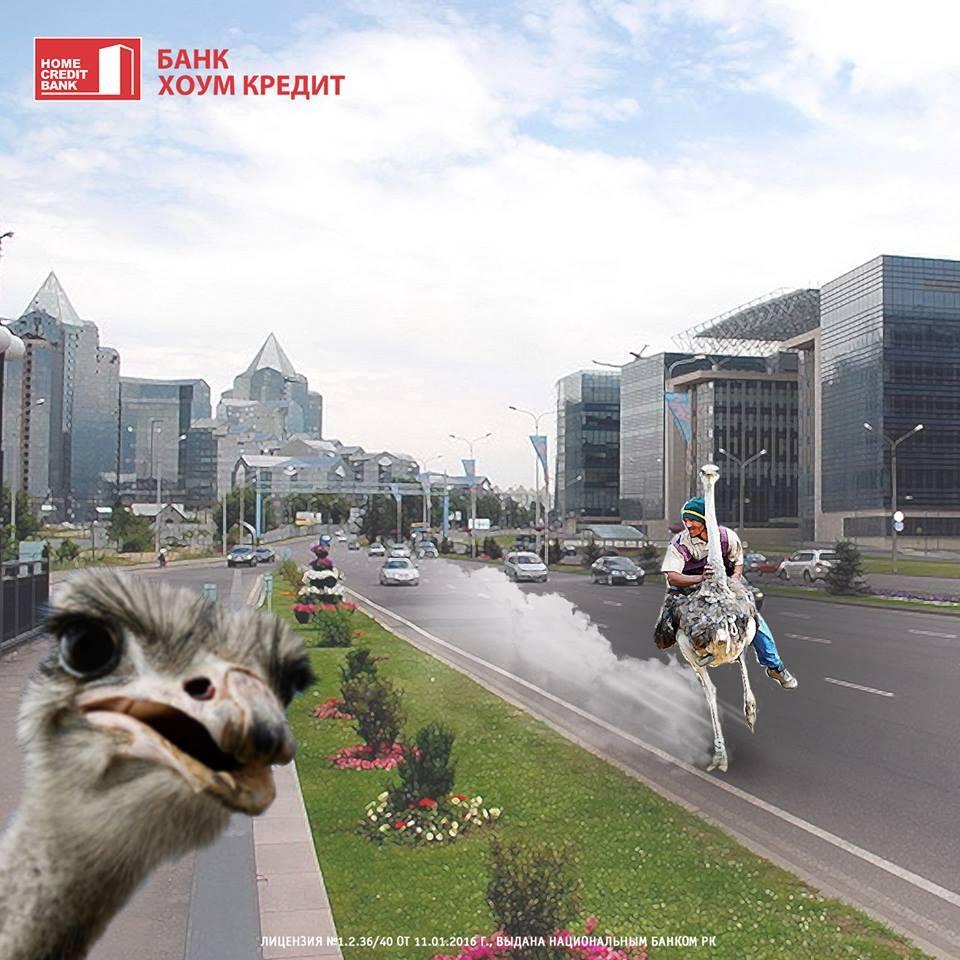 Банк Хоум Кредит не прошёл мимо страуса