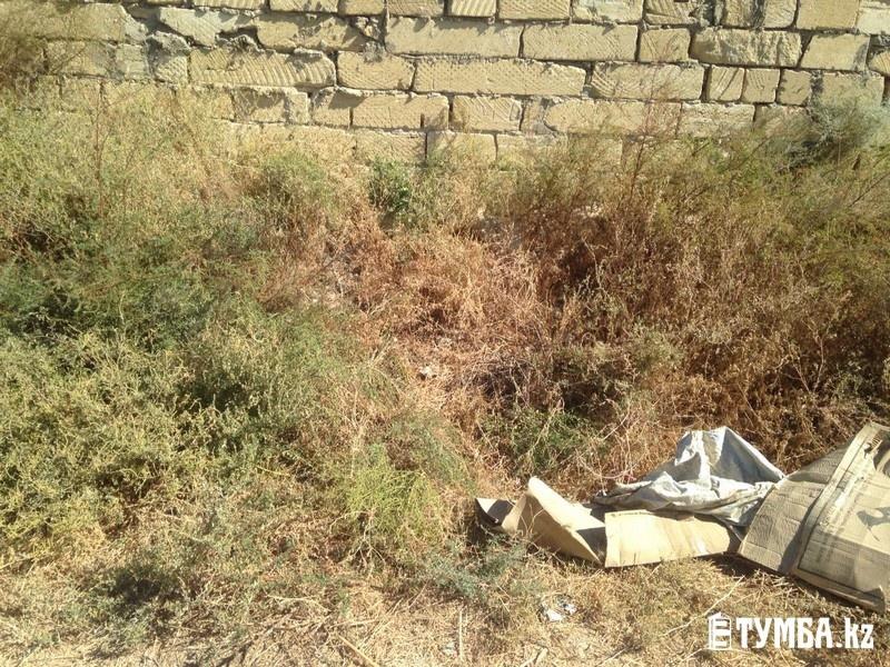 Мужчина нашёл девочку в зарослях травы в районе промышленной базы Актау