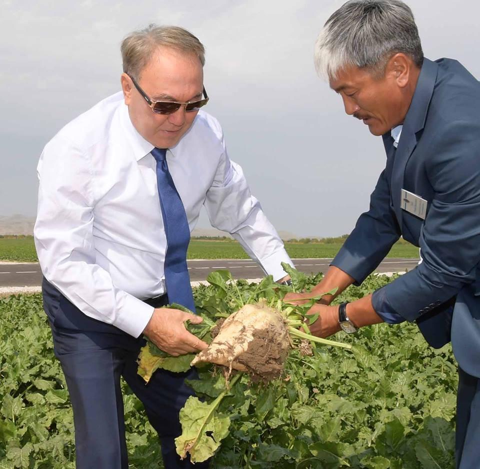 Глава государства посетил крестьянское хозяйство под Талдыкорганом
