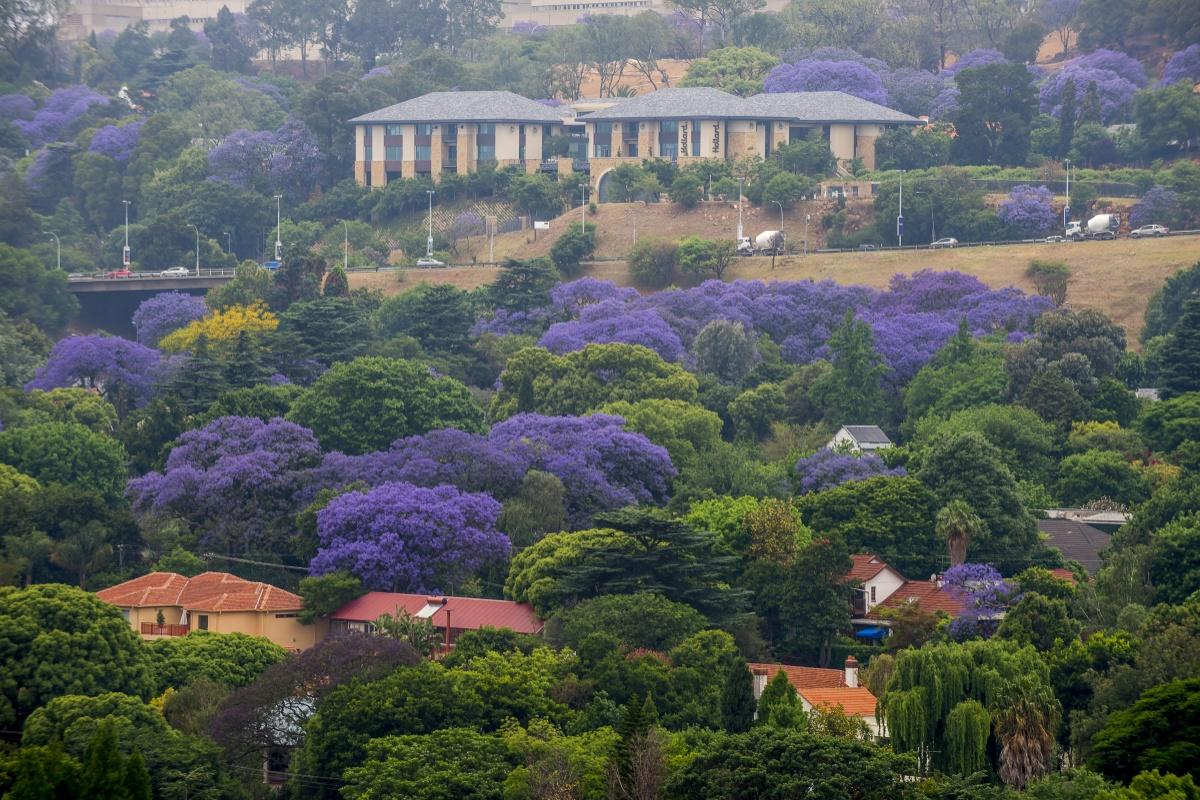 Йоханнсбург в октябре
