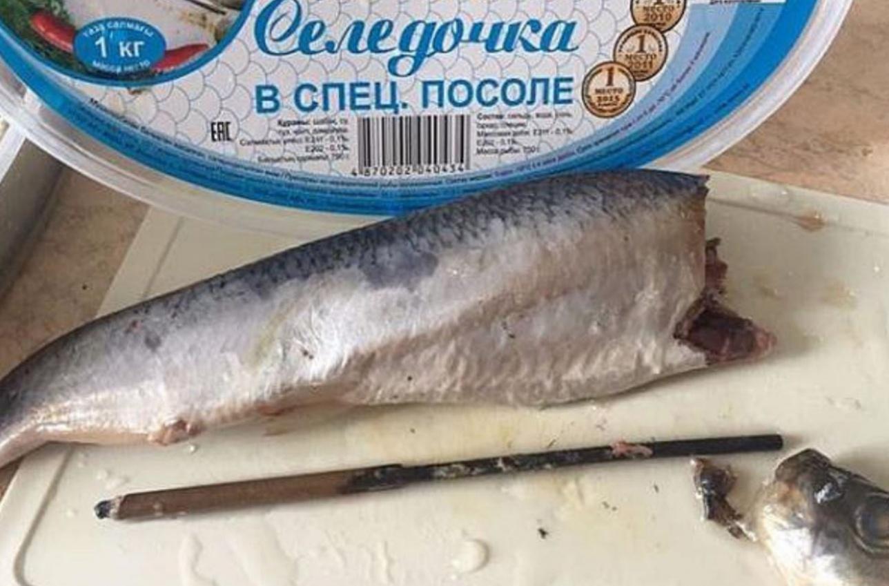 Металлический стержень проходил через всю рыбу