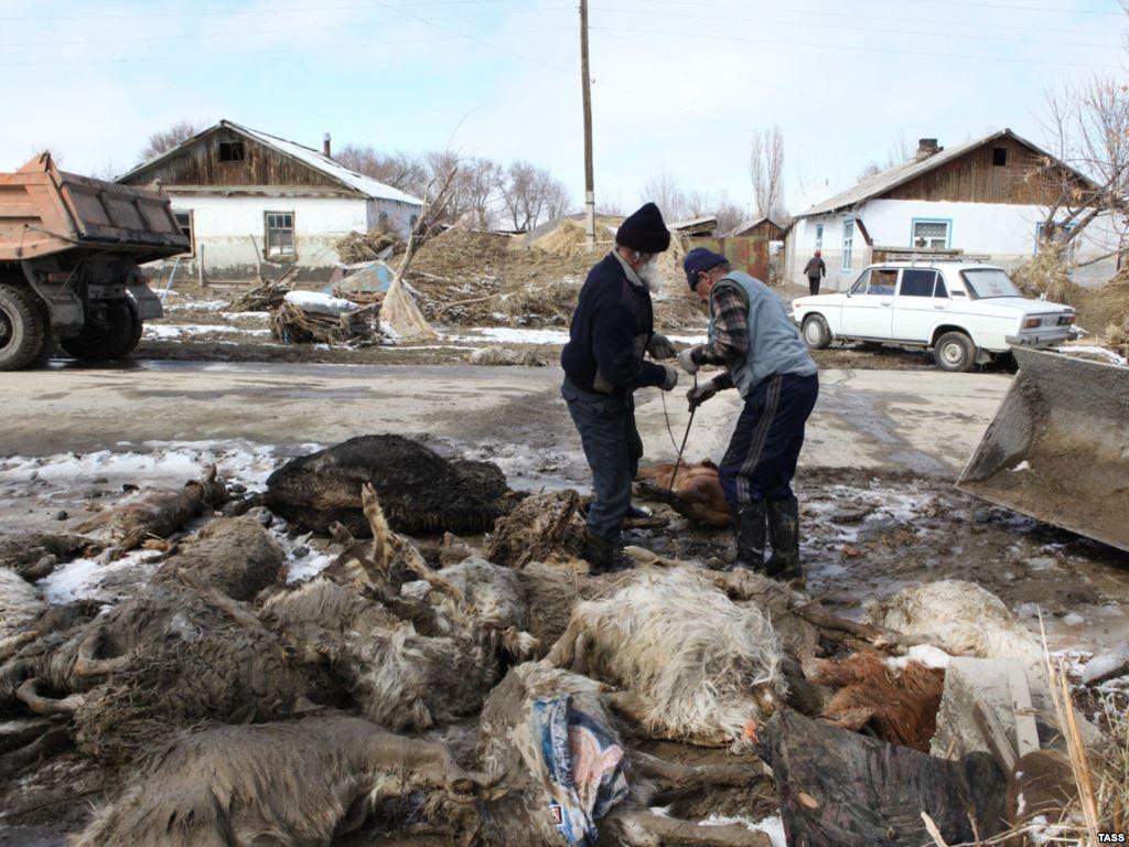 Кызылагаш после наводнения