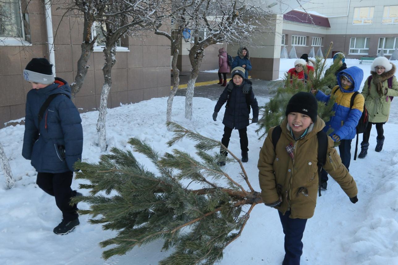 Школьники активно помогают чиновникам избавлять город от ненужных елей