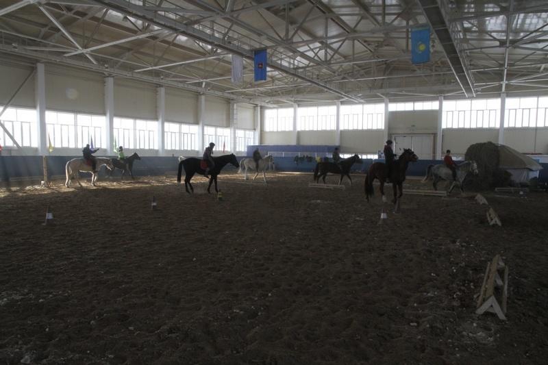 Сотрудники клуба разработали методику занятий на лошадях с больными детьми