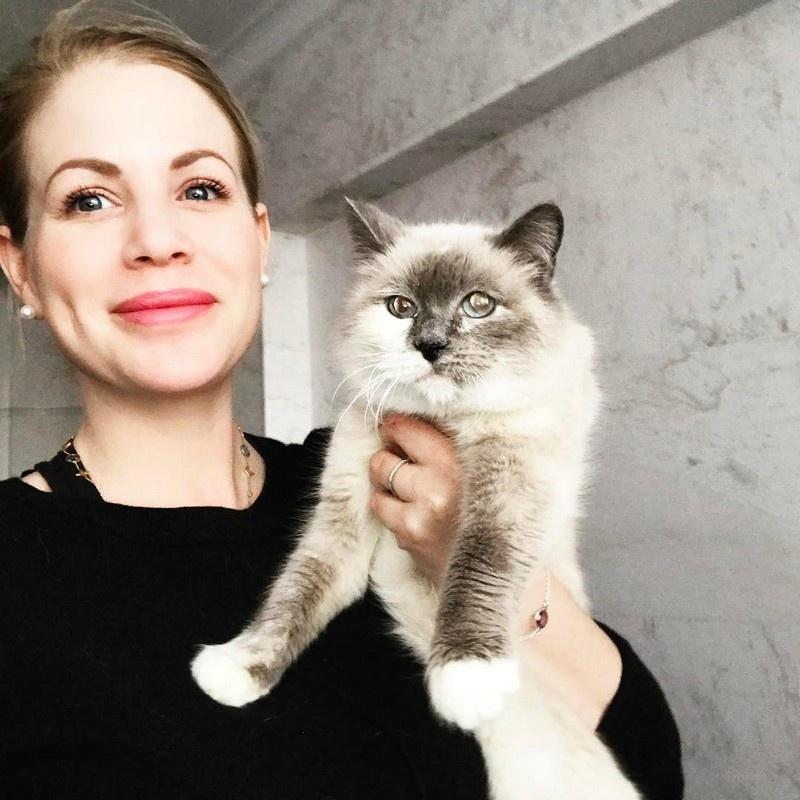 Эту красавицу зовут Смоки. Стейси описывает её как суперспокойную кошечку, любящую спасть под одеялом с хозяином
