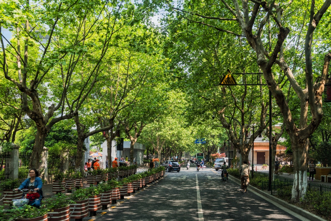 Виды улицы в Ханчжоу