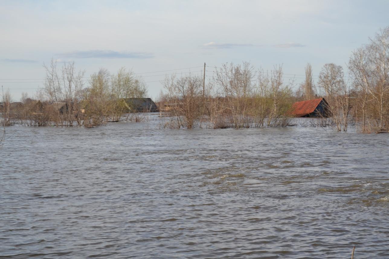 Под воду ушли не только одноэтажные дома