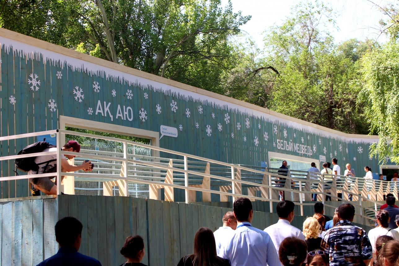 Новый дом белого медведя в зоопарке Алматы