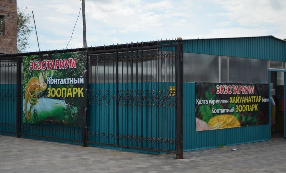 Павлодарский контактный зоопарк