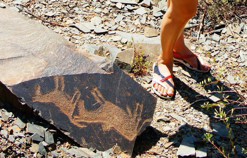 Наши предки изобразили диких лошадей на петроглифах
