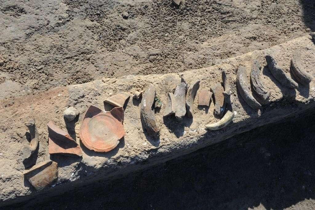 Находки археологов