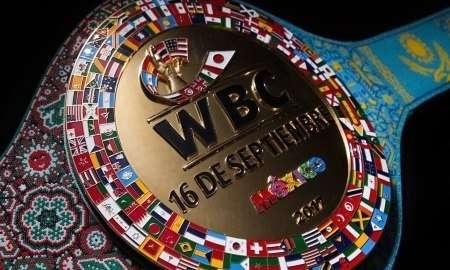 Специальный пояс WBC