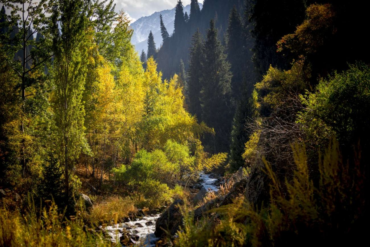 Осень в окрестностях Алматы