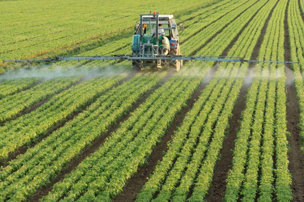 Соңғы бес жылда ауыл шаруашылығында пайдаланатын улы химикаттар көлемі 600 кг-дан 1,8 мың тоннаға дейін артқан