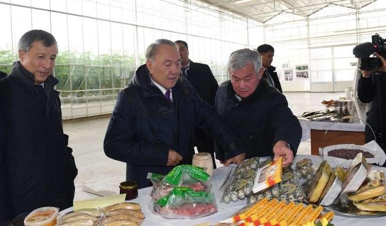 В тепличном комплексе Greenhouse Kazakhstan