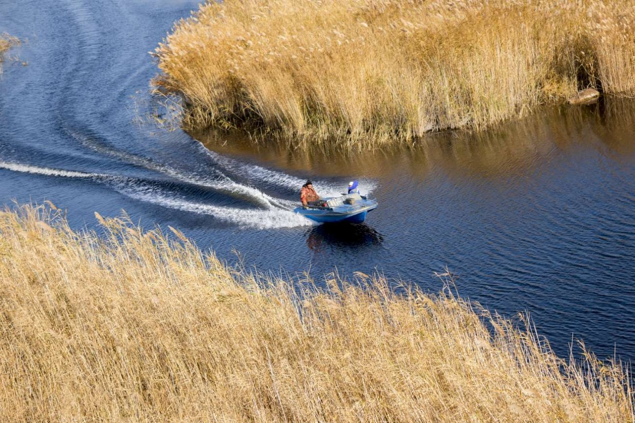 Рыбаки в дельте реки Или