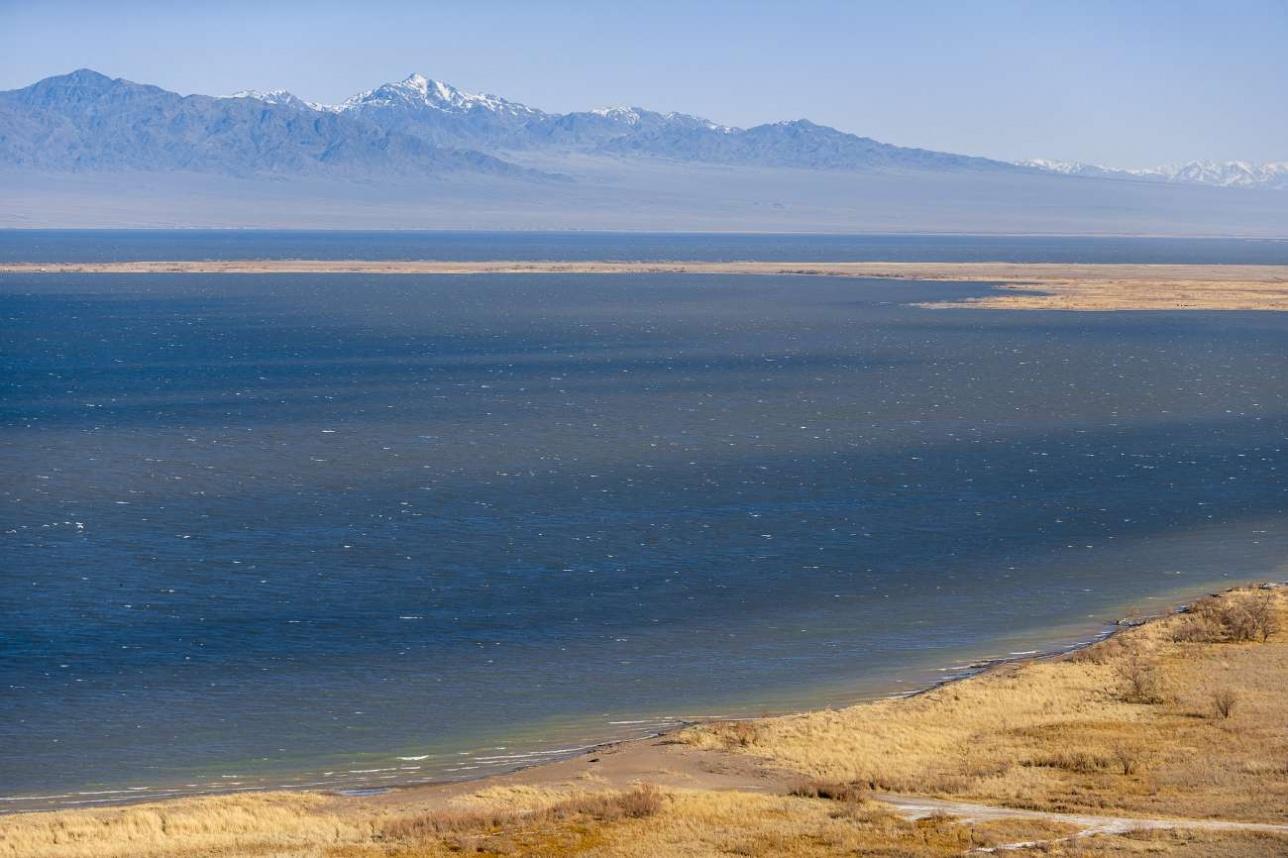 Место впадения реки Или в Капчагайское водохранилище