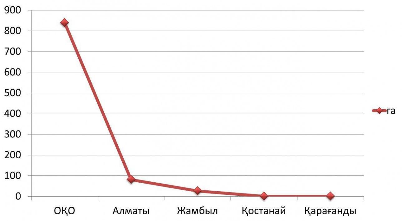 Сол себепті Қостанай мен Қызылорда облысында жылыжай көлемі 1 гектардан төмен