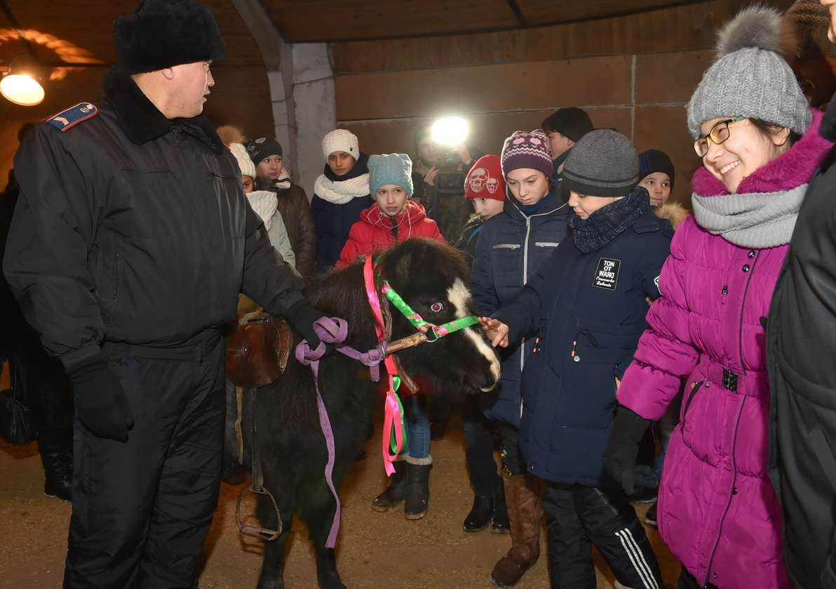 Дети просили у акима пони для занятий иппотерапией