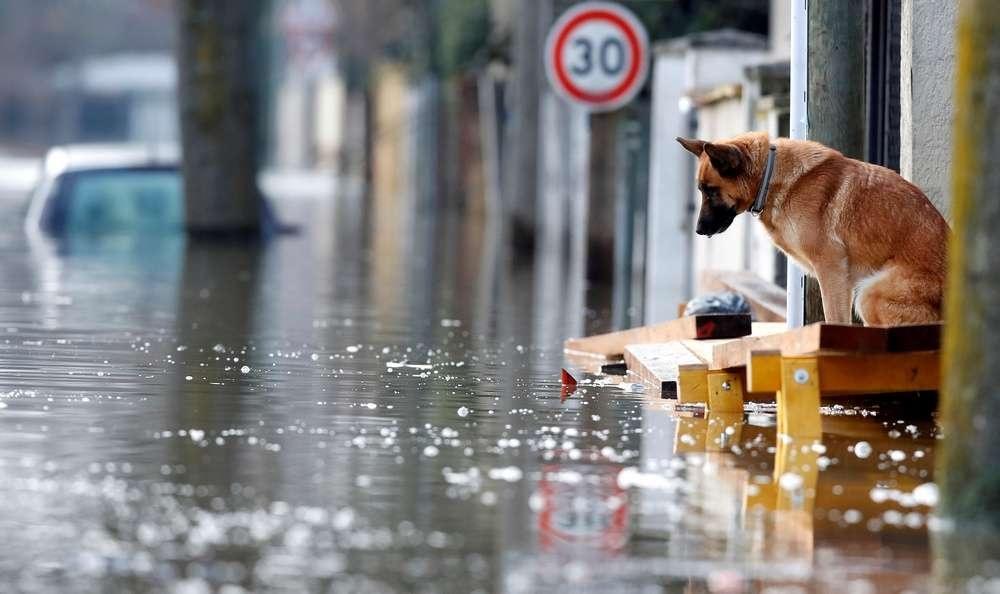 Пик наводнения ожидают в ночь на понедельник