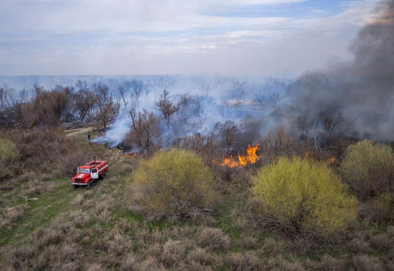 После обнаружения пожара с воздуха на место потягиваются силы и средства местных лесхозов