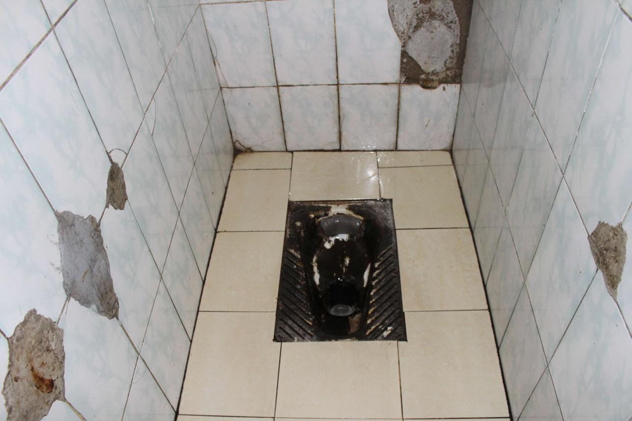 После визита общественников, туалеты очистили от грязи
