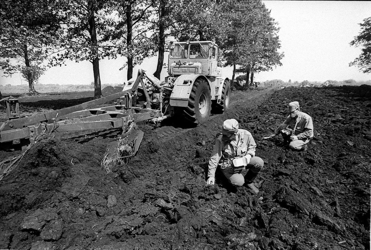 Апатты аймақ ішінде алқаптардағы жер бетін қырып, оларды арнайы жерге көміп залалсыздандырған