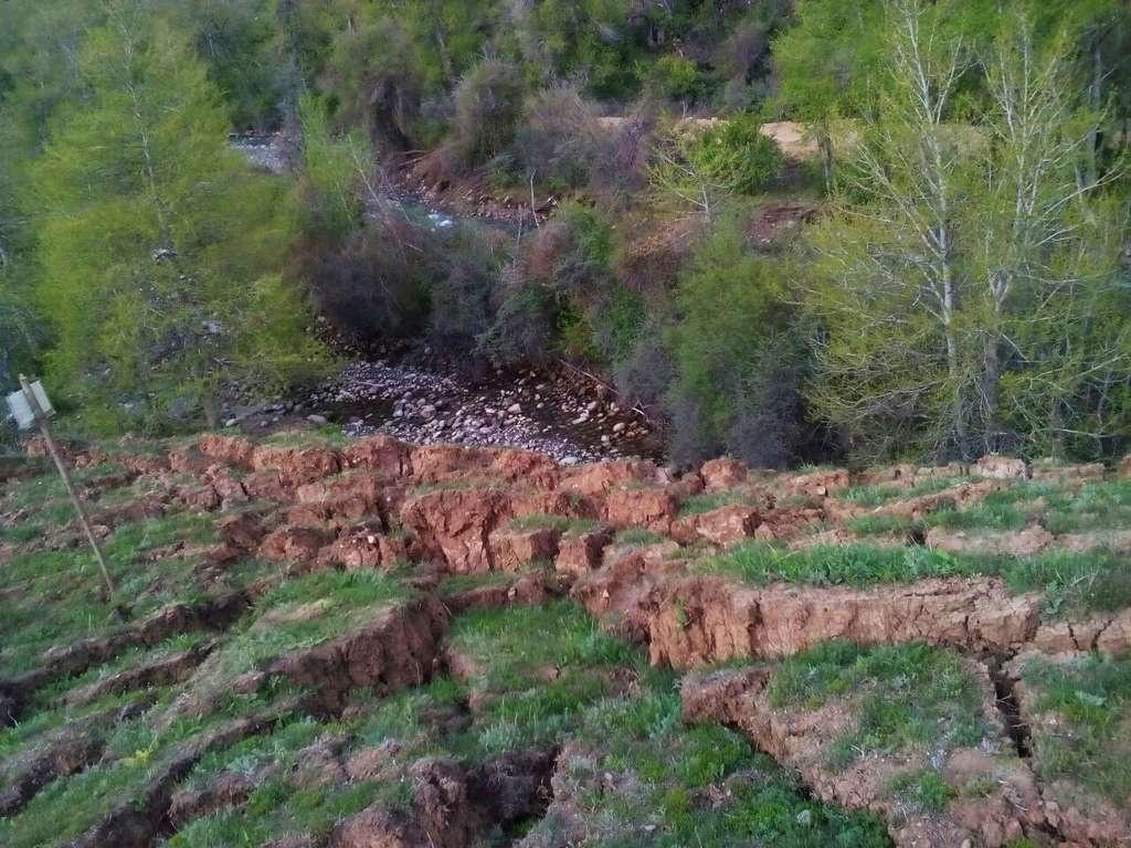 Оползень дошёл до реки Кольсай и завалил её
