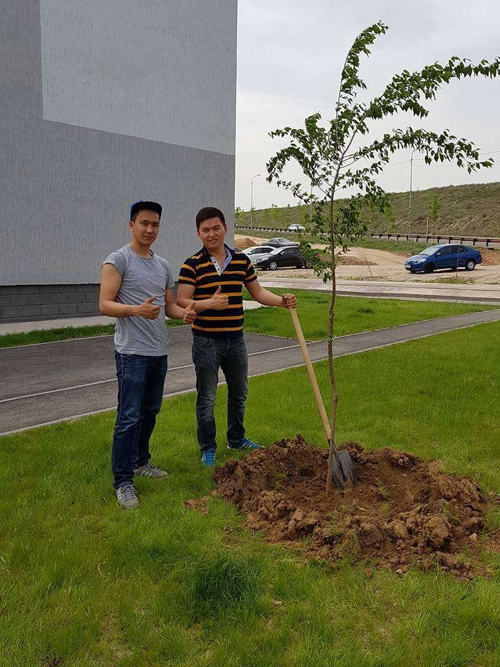 """В микрорайоне """"Саялы"""" посадили свыше 200 деревьев"""