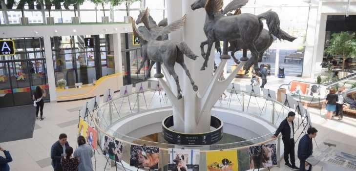На выставке представлены фотографии 53 животных
